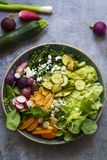 Vegetarian Buddha bowl. With courgettes, radishes, brocolini, fennel, hummus and guacamole Stock Images