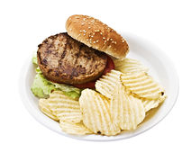 Vegetarian burger with chips. On a styrofoam plate. Isolated on a white background Royalty Free Stock Photo