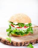 Vegetarian burger with egg, pea patty, fresh salad Royalty Free Stock Image