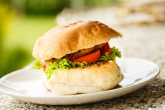 Vegetarian burger on a plate . Green background Stock Photo