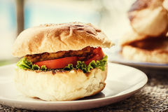 Vegetarian burger on a plate . Green background Royalty Free Stock Image
