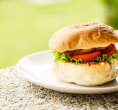 Vegetarian burger on a plate . Green background Stock Photography