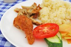 Vegetarian chicken rice with salad Royalty Free Stock Photography