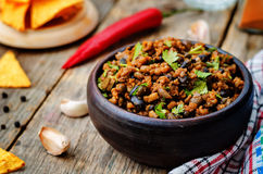 Vegetarian chili with cilantro Royalty Free Stock Photos