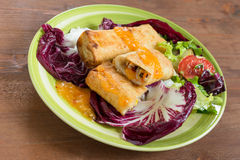 Vegetarian chinese spring rolls Stock Images