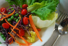 Vegetarian or clean foods for diet and healthy Stock Photography
