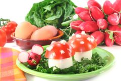 Vegetarian cold cuts Stock Images