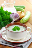 Vegetarian cold soup zucchini Royalty Free Stock Images
