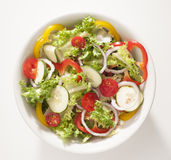 Vegetarian cousine. Dish with salad,peppers,tomatoes,onions isolated on white background Royalty Free Stock Photo