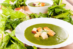 Vegetarian cream soup Royalty Free Stock Images