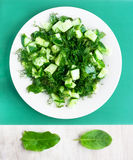 Vegetarian cucumber salad on the round white plate and leafs doc Royalty Free Stock Photography