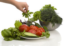 Vegetarian cuisine stock photo