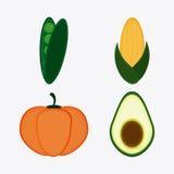 Vegetarian cuisine organic and healthy food design. Pumpkin bean cob and avocado icon. Vegetarian cuisine organic and healthy food theme. Colorful design. Vector Royalty Free Stock Photography