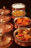 Vegetarian Curries Stock Images