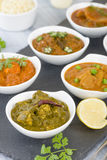 Vegetarian Curries Stock Photos