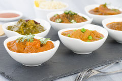Vegetarian Curries Stock Photos