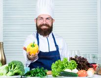 Vegetarian diet concept. Chef cooking sweet pepper. Man wear apron cooking in kitchen. Man cooking healthy recipe pepper. Vegetable. Cooking as hobby and stock images