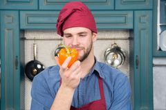 Vegetarian diet concept. Culinary recipe with pepper. Chef cooking sweet pepper. Vegetarian cuisine ingredient. Man chef. Wear apron cooking in kitchen. Man royalty free stock photography