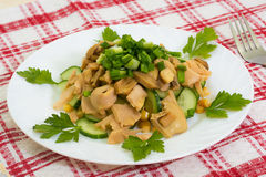Vegetarian dinner mushroom salad Stock Image
