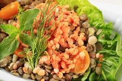 Vegetarian dish stock photography