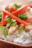 Vegetarian dish closeup Stock Photography