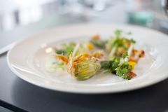 Vegetarian dish of fried Zucchini flowers. Arranged on white plate in a restaurant Stock Images