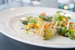 Vegetarian dish of fried Zucchini flowers. Arranged on white plate in a restaurant Royalty Free Stock Image
