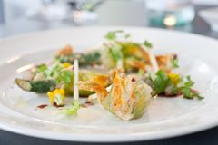 Vegetarian dish of fried Zucchini flowers. Arranged on white plate in a restaurant Stock Photo