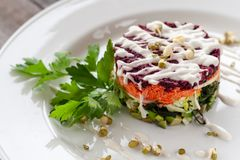 Vegetarian dish: layered salad of wakame, beets, carrots, zucchini, avocados, greens, mayonnaise and sprouted seeds. royalty free stock photo