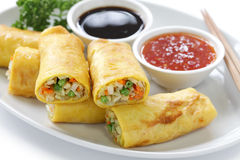 Vegetarian egg rolls Stock Images