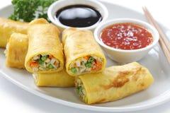 Vegetarian Egg Rolls Stock Images