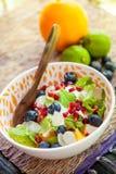 vegetarian för sallad för porslin för apelsiner för matfruktdruvor Fotografering för Bildbyråer