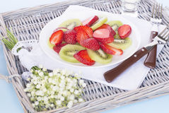 vegetarian för sallad för porslin för apelsiner för matfruktdruvor Arkivbilder