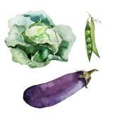 Vegetarian för strikt vegetarian för rotfrukter för bakgrundstapettextur Arkivfoto