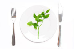 Vegetarian food concept Stock Photo