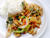 Vegetarian Food with fried egg, vegetable and Light Soya sauce & thai jasmine rice, Healthy food Stock Photography
