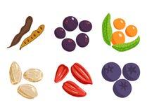 Vegetarian food healthy vegetable and fruits restaurant dishes cartoon berry vector. Vegetarian food healthy and vegetable vegetarian green food fresh organic Stock Photo