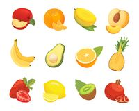 Vegetarian food icons in cartoon style. Color fresh tropical organic fruits. Health fruity harvest illustration. Vegetarian food icons in cartoon style. Color royalty free illustration