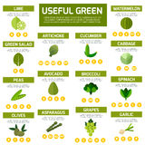 Vegetarian food infographic  background. Royalty Free Stock Image
