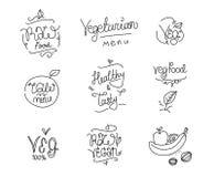 Vegetarian food labels. Hand drawn typographic elements. Vegan cuisine. Raw foods. Vegetarian food lables. Hand drawn typographic elements. Usable for logo Stock Photos