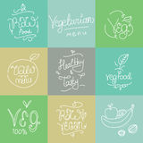 Vegetarian food labels. Hand drawn typographic elements. Vegan cuisine. Raw foods. Stock Images