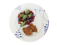 Vegetarian food. Vegetable cutlets from red lentils, onions, parsley and oatmeal. With salad of broccoli, pomegranate seeds and bl. Ueberries a variety of stock images