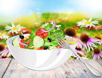 Vegetarian fresh salad royalty free illustration