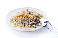 Vegetarian Fried Rice Stock Image