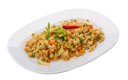 Vegetarian fried rice Royalty Free Stock Image
