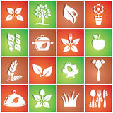 Vegetarian icons. White vegetarian food icons in colorful squares Stock Images