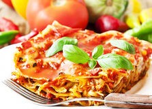 Vegetarian Lasagna Stock Images