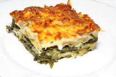 Vegetarian lasagna with ricotta cheese Stock Images