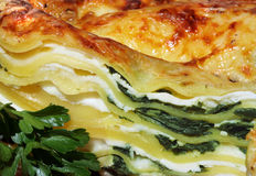 Vegetarian lasagna with ricotta and spinach Royalty Free Stock Image