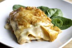 Vegetarian Lasagne Stock Photos
